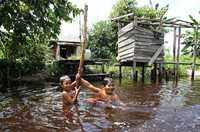 Children swim in the Mantangai River in Central Kalimantan, Indonesia.