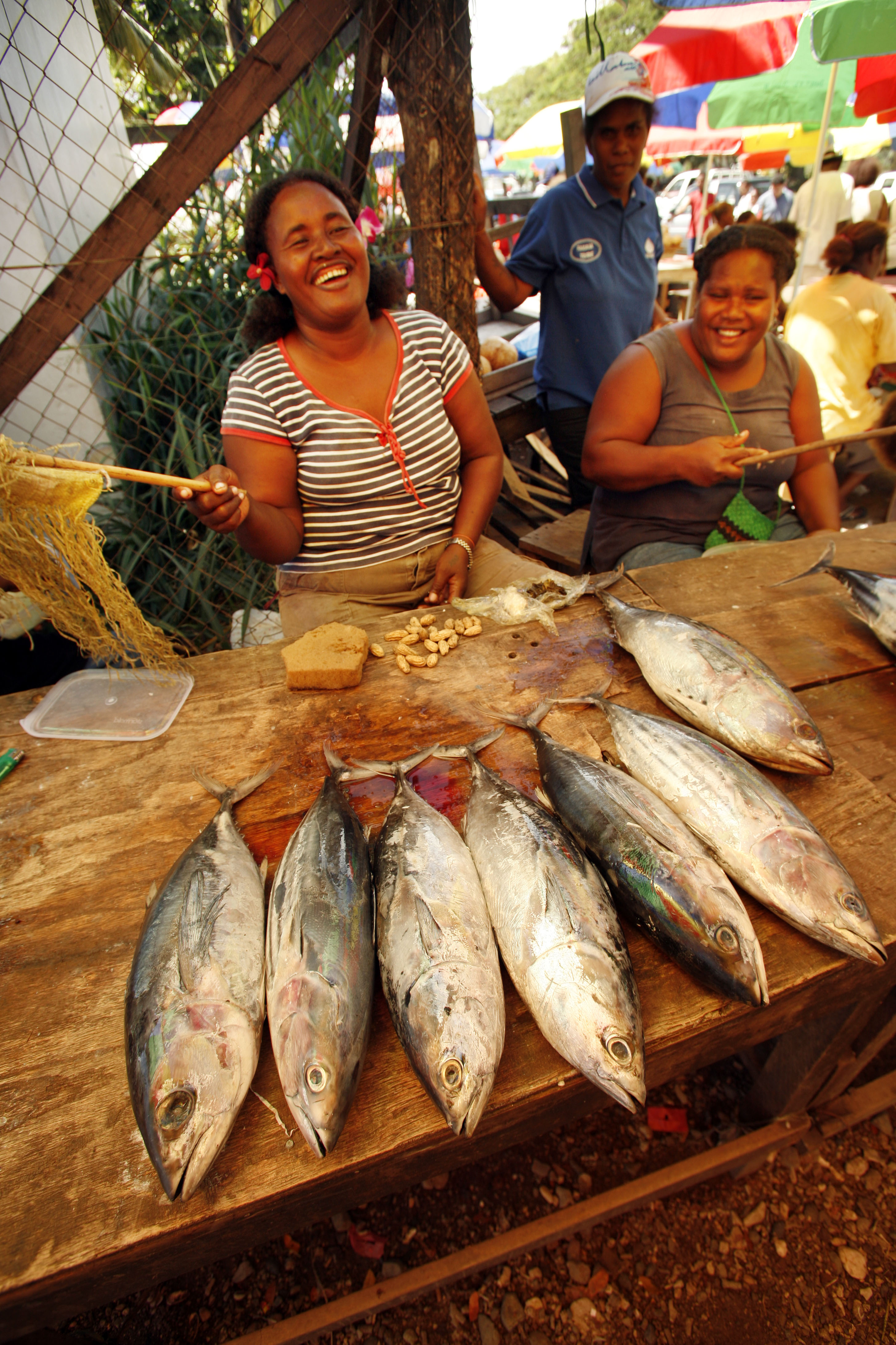 Fish for sale at an open-air market in Honiara, Solomon Islands Photo by Rob Maccoll for AusAID