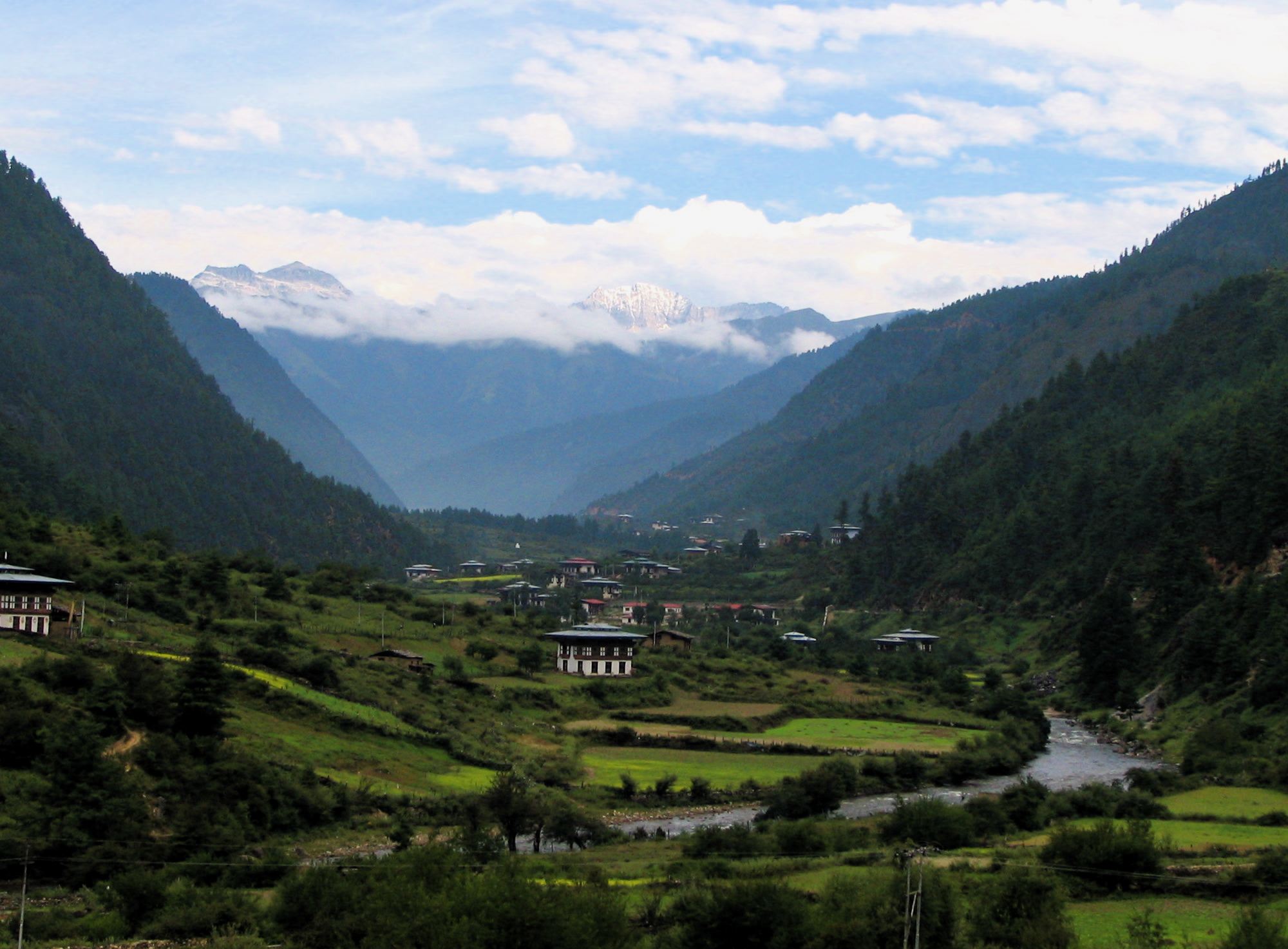 The steep Haa Valley in western Bhutan looks toward the snow-capped Himalayas. Photo by Douglas J McLaughlin/Wikimedia