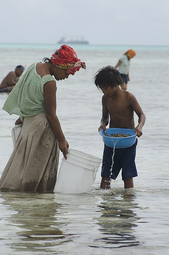 Women and children collect shellfish along the causeway, South Tarawa, Kiribati. Photo by Lorrie Graham for AusAID