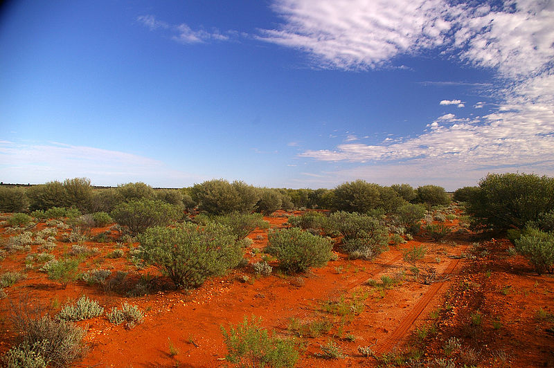 Australia's red soil and flat, dry land is sparsely populated but home to a wealth of unique animals and plants. Photo by Wayne England/Wikipedia CC BY-NC-ND 2.0 licence