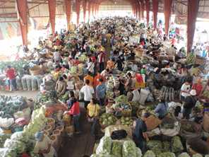 A wide variety of fruit and vegetables are available at the market in the Philippines. Photo by Rowena Harbridge for AusAID