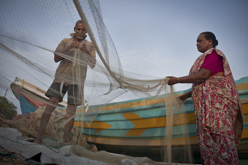 Thiruchelvam and Nesam sort their catch of small fish in preparation for sale at the Mathagal market, Sri Lanka. Photo by AusAID