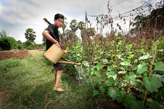 Landmine survivor Koe Kan's prosthetic leg enables him to work in his garden and sell his vegetables at the market. Photo by Kevin Evans for AusAID