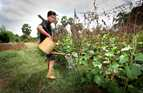 Landmine survivor Koe Kan's prosthetic leg enables him to work in his garden and sell his vegetables at the market.