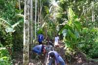 Clearing drains and open waterways reduces the number of mosquito-breeding areas in Solomon Islands.