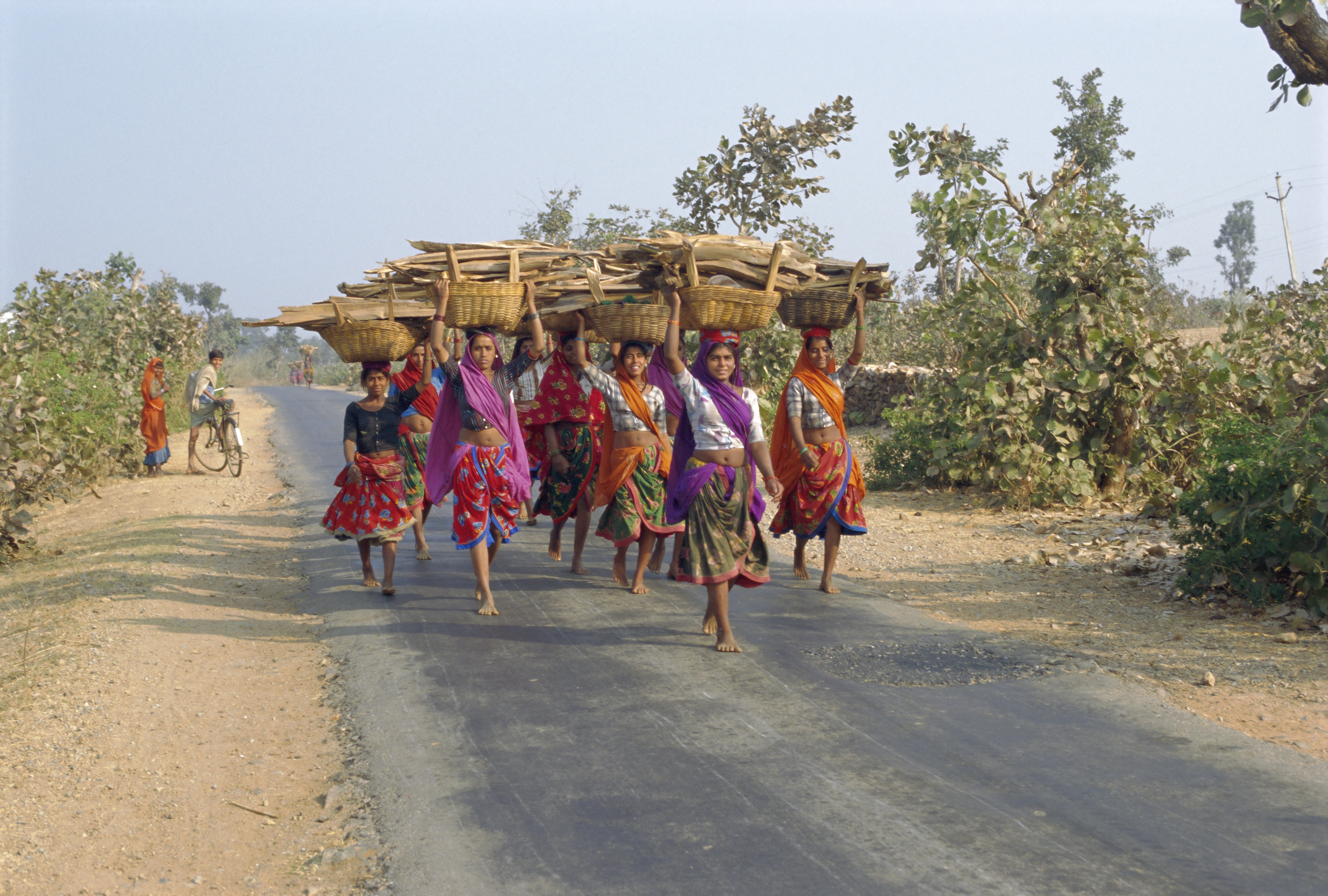 Women in  Rajasthan, India, in saris spend time searching for, collecting and carrying firewood before they can cook food. Photo © Robert Harding/Robert Harding World Imagery/Corbis