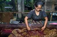 Soaking the waxed cotton in dye at a batik workshop in Indonesia