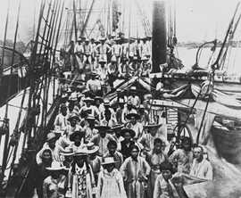 Pacific Islanders recruited and indentured from Solomon Islands and Vanuatu to work in the Australian sugar industry arriving in Bundaberg. State Library of Queensland, negative number 16954