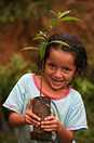 A young girl holds a fruit tree sapling