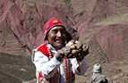 A Peruvian man in traditional dress holds up a plate of potatoes