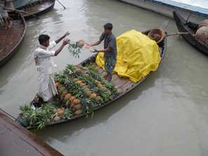 Selling pineapples from a boat on the river, Bangladesh. DFAT
