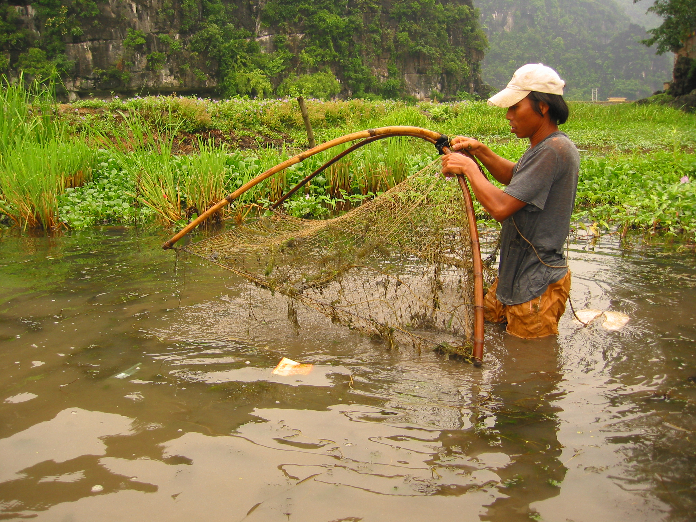 A man lowers his fishing net into the river to catch fish for his family's evening meal in Vietnam. Photo by Bruce Bailey for AusAID