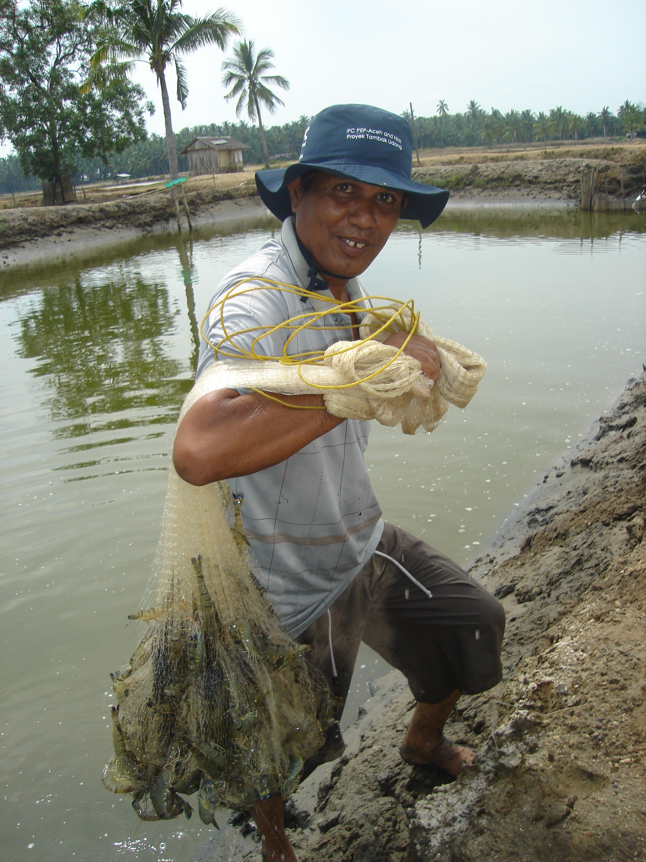 Farmers are trained to produce more and better quality fish and prawns in their aquaculture ponds in Aceh, Indonesia. Photo by International Finance Corporation