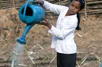 A girl waters her family vegetable plot, helping to produce a healthy crop and vital nutrition in Sekong, Laos.