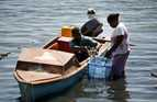 Taking fish to market in Solomon Islands.