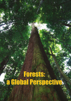 Forests a global perspective cover