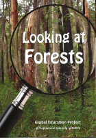 Looking at forests cover