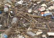 Plastic debris pollutes waterways.